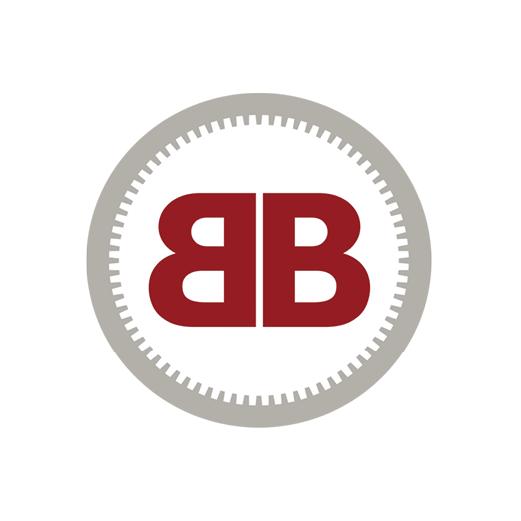 logo-EIRL Bruno BIGOT |Aménagement Intérieur Rochecorbon