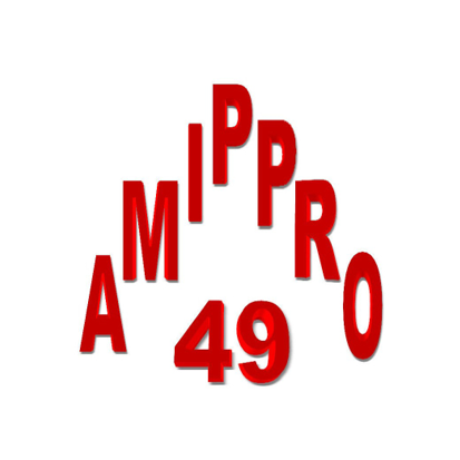 logo-AMIPPRO 49 | Menuisier - Plaquiste Beaupréau