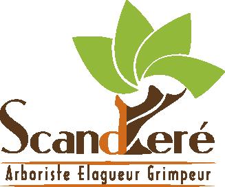 logo-Scanderé | Élagage - Abattage Arbre - Monteuil Bellay
