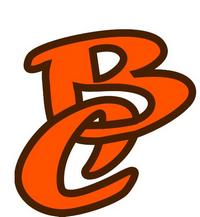 logo-Boumard Cussonneau TP |Assainissement - Terrassement-Landemont-Liré