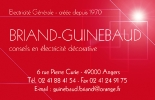 logo-Briand Guinebaud   Electricien Angers - Bouchemaine - Les Ponts de Cé