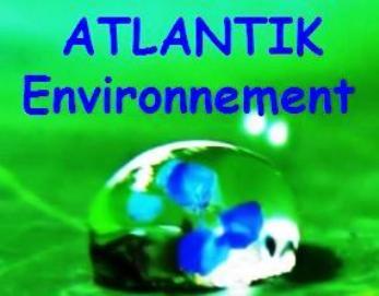 logo-Atlantik Environnement | Assainissement Collectif Autonome Ancenis