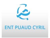 logo-Puaud Cyril | Maçon - Vivonne - Payré