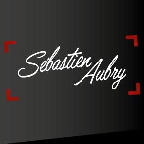 logo-Aubry Sébastien | Couvreur - Zingueur - St Aubin d'Aubigné - Combourg