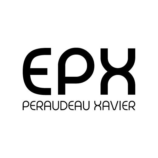 logo-Peraudeau Xavier | Électricien - Pose Domotique Oudon - Ancenis