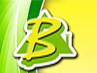 logo-Bouchaud Daniel | Maçon Biard