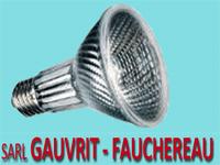logo-Gauvrit Fauchereau | Électricien - Mareuil Sur Lay - Dissais
