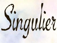 logo-Singulier Pierre Thierry | Peintre - Décorateur - Pont St Martin